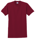 ECOMAGIC-$12.99 Short Sleeve Tee