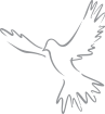 https://images.inksoft.com/images/clipart/thumb/gallery2183/CAT_2-DOVE-A.png